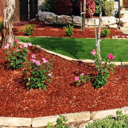 Mulch Covering